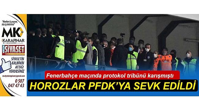 Horozlar PFDK'ya sevk edildi