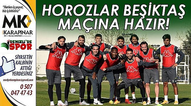 Horozlar, Beşiktaş maçına hazır